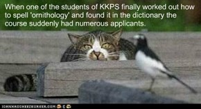 When one of the students of KKPS finally worked out how to spell 'ornithology' and found it in the dictionary the course suddenly had numerous applicants.