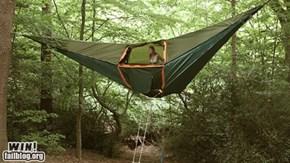 Tree Tent WIN