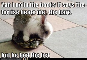 Yah I no in the books it says the tortise beats me , the hare,  but he lost the bet