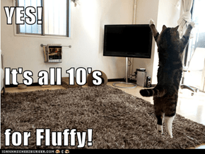 YES! It's all 10's for Fluffy!
