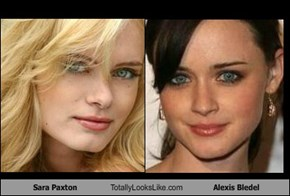 Sara Paxton Totally Looks Like Alexis Bledel