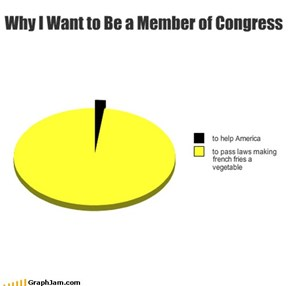 Why I Want to Be a Member of Congress