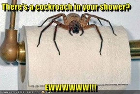 There's a cockroach in your shower?  EWWWWWW!!!