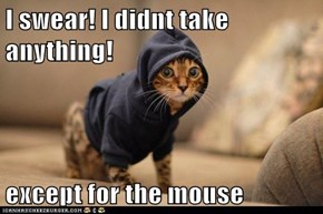 I swear! I didnt take anything!  except for the mouse