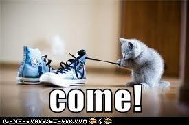 come!