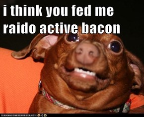 i think you fed me raido active bacon