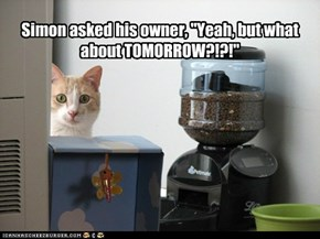 "Simon asked his owner, ""Yeah, but what about TOMORROW?!?!"""