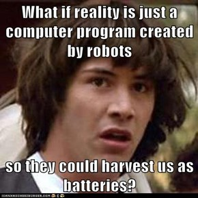 What if reality is just a computer program created by robots  so they could harvest us as batteries?