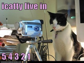 icatty live in  5 4 3 2 1
