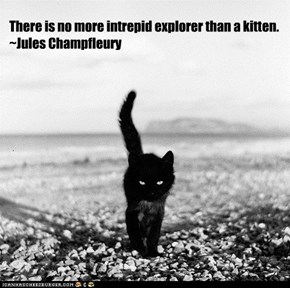 There is no more intrepid explorer than a kitten.~Jules Champfleury