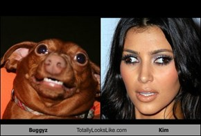 Buggyz Totally Looks Like Kim