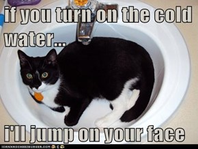 if you turn on the cold water...  i'll jump on your face
