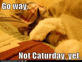 Go way.  Not Caturday, yet.