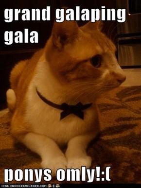 grand galaping gala   ponys omly!:(