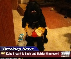 Breaking News - Kobe Bryant is Back and Hairier than ever!