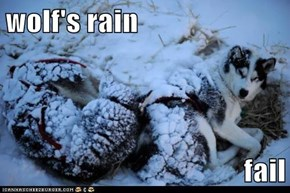 wolf's rain  fail