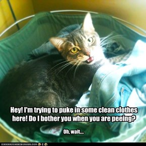 Hey! I'm trying to puke in some clean clothes here!