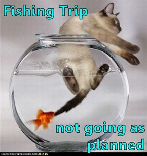 Fishing Trip  not going as planned