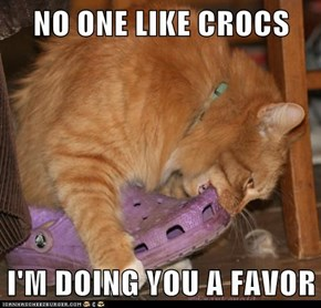 Lolcats: I'M DOING YOU A FAVOR