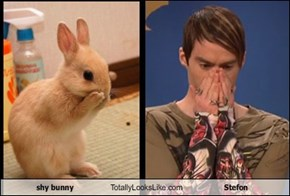 shy bunny Totally Looks Like Stefon