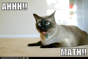 AHHH!!  MATH!!