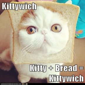 Kittywich  Kitty + Bread = Kittywich