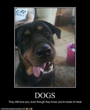 I Has A Hotdog: Dats tru lub...