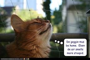 De goggie mus be home.