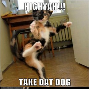 HIGHYAH!!!  TAKE DAT DOG