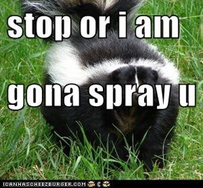 stop or i am gona spray u