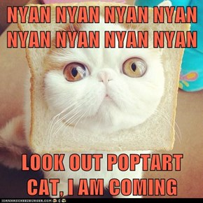 NYAN NYAN NYAN NYAN NYAN NYAN NYAN NYAN  LOOK OUT POPTART CAT, I AM COMING