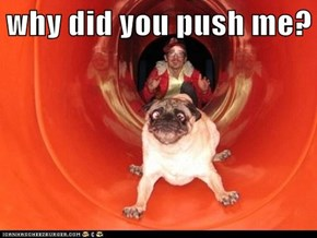 why did you push me?