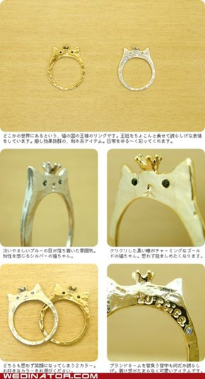Meow-gnificent Wedding Bands