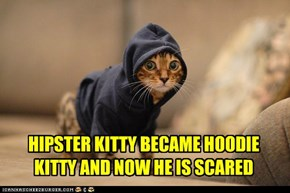 HIPSTER KITTY BECAME HOODIE KITTY AND NOW HE IS SCARED