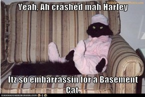 Yeah, Ah crashed mah Harley  Itz so embarrassin for a Basement Cat.