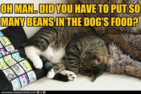 OH MAN.. DID YOU HAVE TO PUT SO MANY BEANS IN THE DOG'S FOOD?