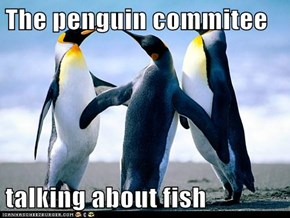 The penguin commitee  talking about fish