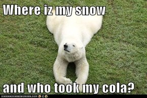 Where iz my snow  and who took my cola?