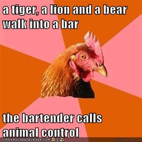 a tiger, a lion and a bear walk into a bar  the bartender calls animal control