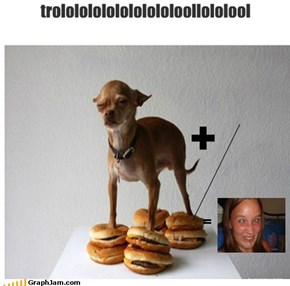 trolololololololololoollololool
