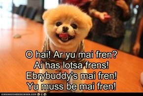 I Has A Hotdog: Yu be mai fren!