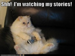 Shh!  I'm watching my stories!