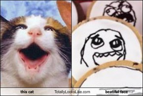 this cat Totally Looks Like beatiful face