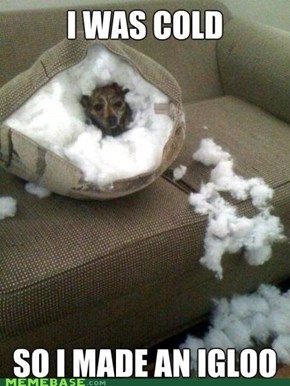 The Tauntaun Couch