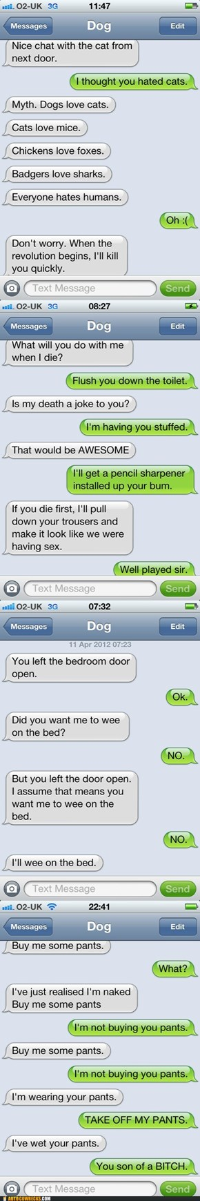 Autocowrecks: If Dogs Could Text, Part II
