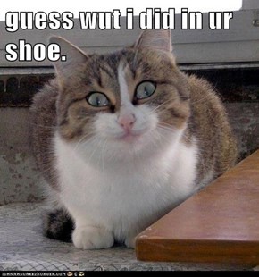 guess wut