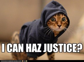 Hoodie Cat: I CAN HAZ JUSTICE?