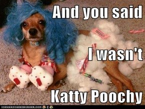 And you said I wasn't Katty Poochy