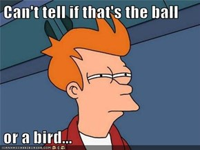 Can't tell if that's the ball  or a bird...