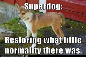 Superdog:  Restoring what little normality there was.